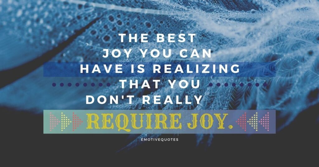 Best-happy-quotes-the-best-joy-you-can-have-is-realizing-that-you-don't-really-require-joy.