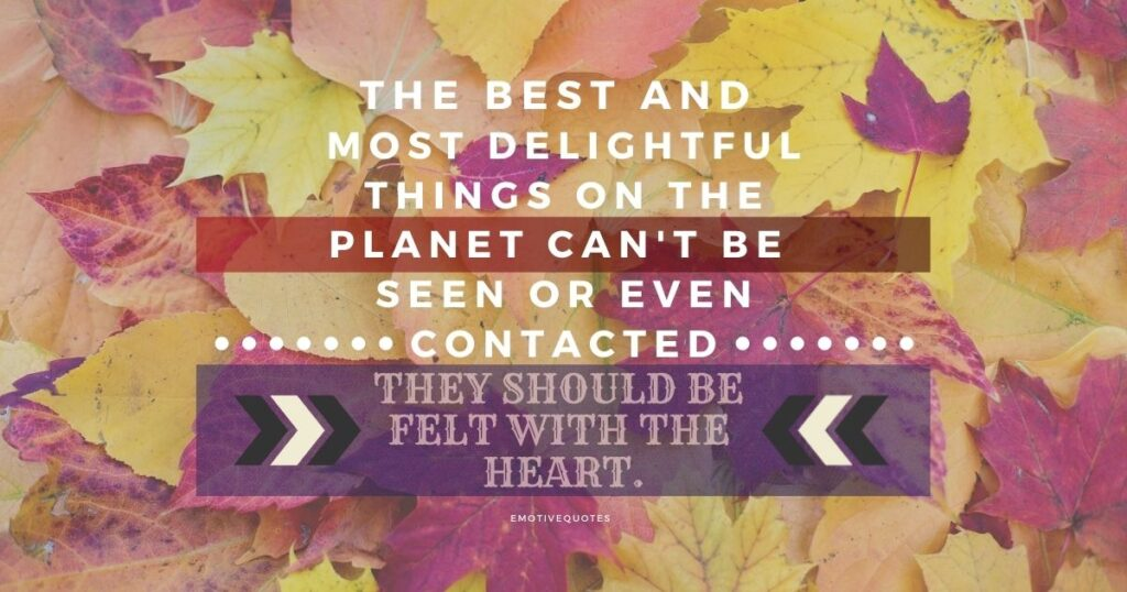 Best-inspirational-quotes-the-best-and-most-delightful-things-on-the-planet-can't-be-seen-or-even-contacted-they-should-be-felt-with-the-heart.