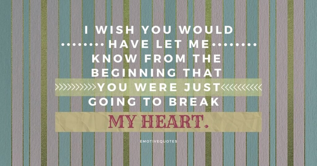I wish you would have let me know from the beginning that you were just going to break my heart.