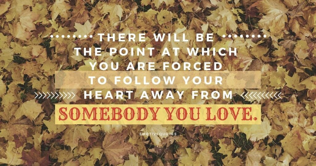 There will be the point at which you are forced to follow your heart away from somebody you love.