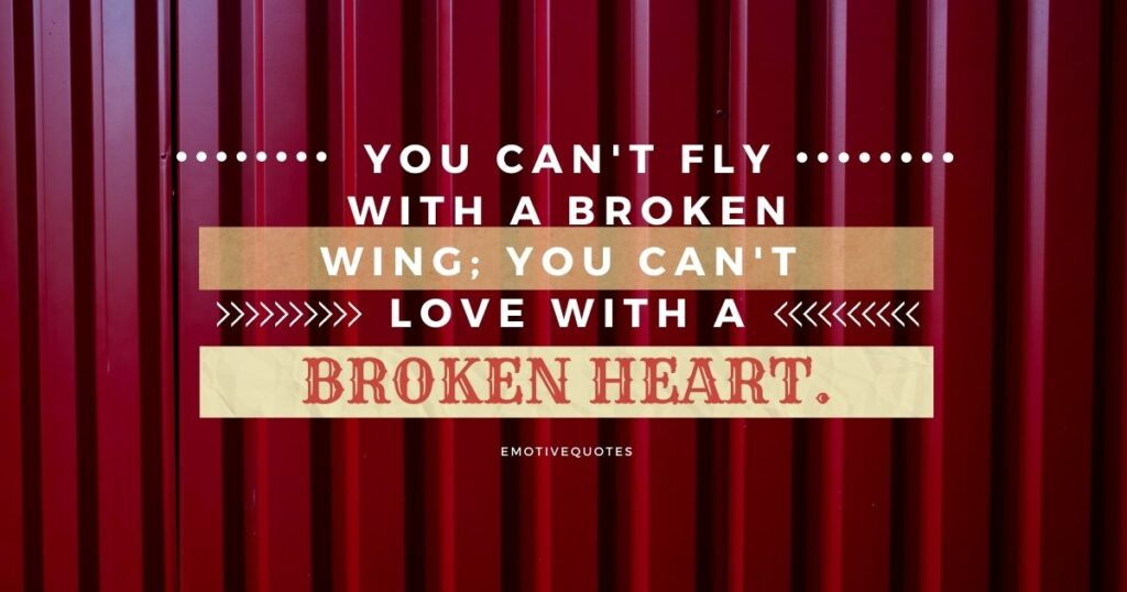 You can't fly with a broken wing; you can't love with broken heart.